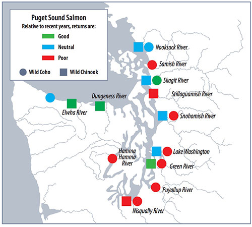 Protect local streams, the Puget Sound, Fish, and Orcas
